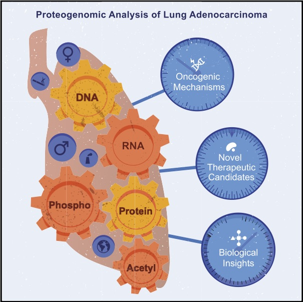 Image for project Lung Cancer – Adenocarcinoma